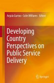 Developing Country Perspectives on Public Service Delivery (eBook, PDF)