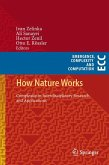 How Nature Works (eBook, PDF)