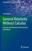 General Relativity Without Calculus (eBook, PDF)
