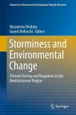Storminess and Environmental Change (eBook, PDF)