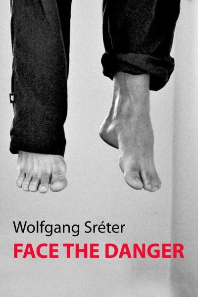 Face the Danger (eBook, ePUB) - Sreter, Wolfgang