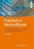 Praktikum in Werkstoffkunde (eBook, PDF)