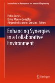 Enhancing Synergies in a Collaborative Environment (eBook, PDF)