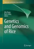 Genetics and Genomics of Rice (eBook, PDF)