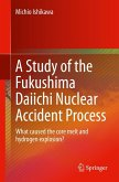 A Study of the Fukushima Daiichi Nuclear Accident Process (eBook, PDF)