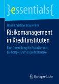 Risikomanagement in Kreditinstituten (eBook, PDF)