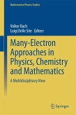 Many-Electron Approaches in Physics, Chemistry and Mathematics (eBook, PDF)