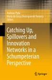 Catching Up, Spillovers and Innovation Networks in a Schumpeterian Perspective (eBook, PDF)