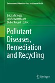 Pollutant Diseases, Remediation and Recycling (eBook, PDF)