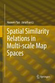 Spatial Similarity Relations in Multi-scale Map Spaces (eBook, PDF)