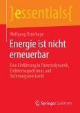 Energie ist nicht erneuerbar (eBook, PDF)