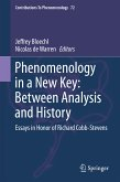 Phenomenology in a New Key: Between Analysis and History (eBook, PDF)