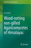 Wood-rotting non-gilled Agaricomycetes of Himalayas (eBook, PDF)