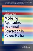 Modeling Approaches to Natural Convection in Porous Media (eBook, PDF)