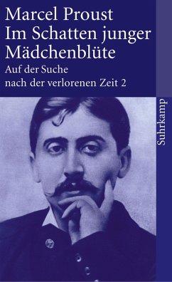 Auf der Suche nach der verlorenen Zeit. Frankfurter Ausgabe (eBook, ePUB) - Proust, Marcel