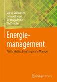 Energiemanagement (eBook, PDF)