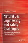 Natural Gas Engineering and Safety Challenges (eBook, PDF)