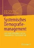 Systemisches Demografiemanagement (eBook, PDF)