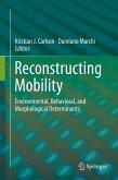 Reconstructing Mobility (eBook, PDF)
