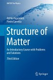 Structure of Matter (eBook, PDF)