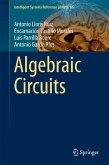 Algebraic Circuits (eBook, PDF)