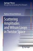 Scattering Amplitudes and Wilson Loops in Twistor Space (eBook, PDF)