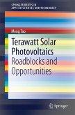 Terawatt Solar Photovoltaics (eBook, PDF)