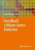 Handbuch Lithium-Ionen-Batterien (eBook, PDF)