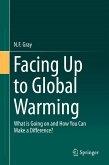 Facing Up to Global Warming (eBook, PDF)