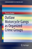 Outlaw Motorcycle Gangs as Organized Crime Groups (eBook, PDF)