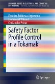 Safety Factor Profile Control in a Tokamak (eBook, PDF)