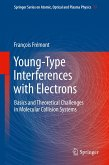 Young-Type Interferences with Electrons (eBook, PDF)