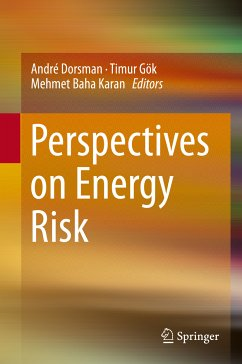 Perspectives on Energy Risk (eBook, PDF)