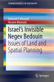 Israel's Invisible Negev Bedouin (eBook, PDF)