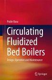 Circulating Fluidized Bed Boilers (eBook, PDF)