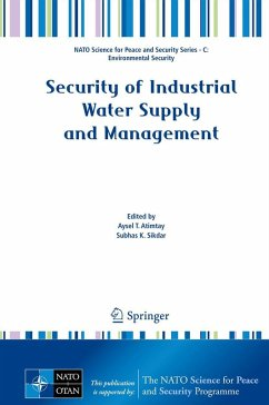 Security of Industrial Water Supply and Management (eBook, PDF)