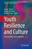 Youth Resilience and Culture (eBook, PDF)