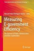 Measuring E-government Efficiency (eBook, PDF)