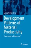 Development Patterns of Material Productivity (eBook, PDF)