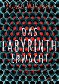 Das Labyrinth erwacht / Labyrinth Bd.1