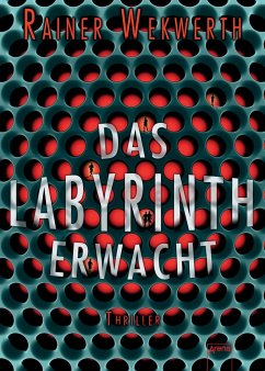 Das Labyrinth erwacht / Labyrinth Bd.1 - Wekwerth, Rainer