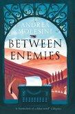 Between Enemies (eBook, ePUB)