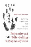 Polyandry and Wife-Selling in Qing Dynasty China (eBook, ePUB)