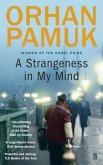 A Strangeness in My Mind (eBook, ePUB)
