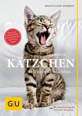 Verspielte Kätzchen (eBook, ePUB)