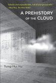 A Prehistory of the Cloud (eBook, ePUB)