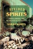 Divided Spirits (eBook, ePUB)