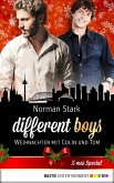 Weihnachten mit Colin und Tom / different boys (eBook, ePUB)