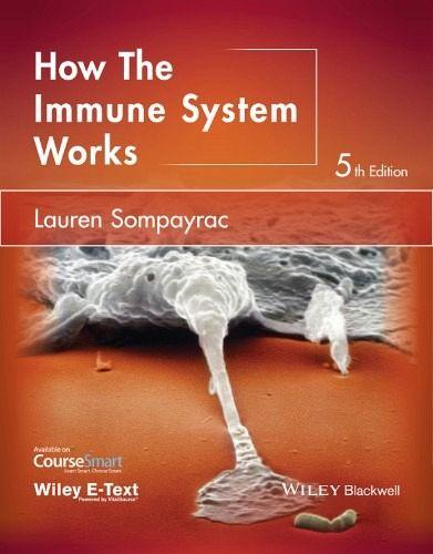 How The Immune System Works Ebook Pdf Von Lauren M Sompayrac