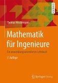 Mathematik für Ingenieure (eBook, PDF)